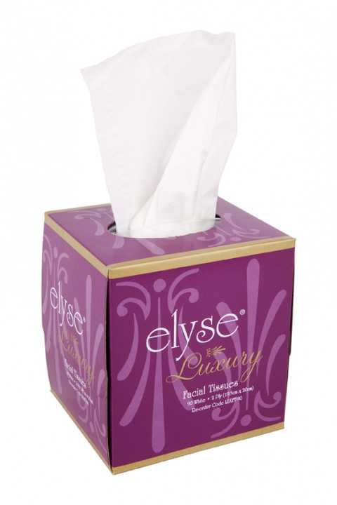 2ply Facial Tissues 90 Cube